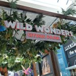 Family Fun in Wild Wonders at Citrus Park Mall Now Through August 5th!
