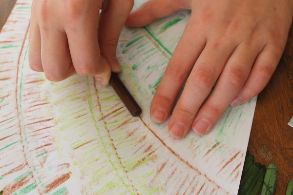 Leaf Rubbing Craft for Kids Inspired by The Jungle Bunch  DVD!