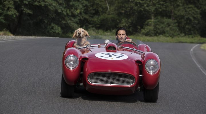 THE ART OF RACING IN THE RAIN in Theatres August 9!